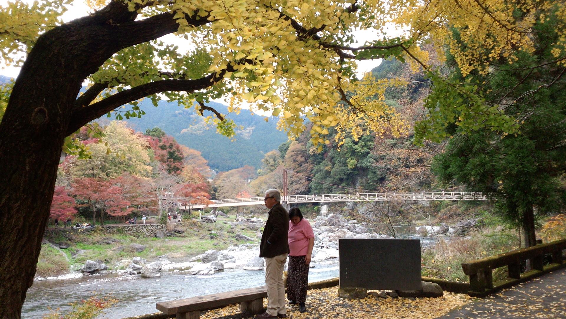 2015-11-17御岳渓谷2.jpg